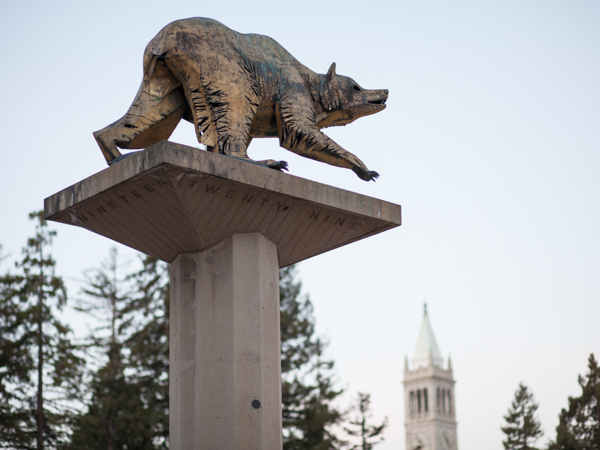Bear statue in Lower Sproul Plaza